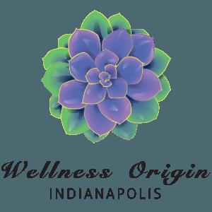 Wellness Origin Indianapolis Spa Logo